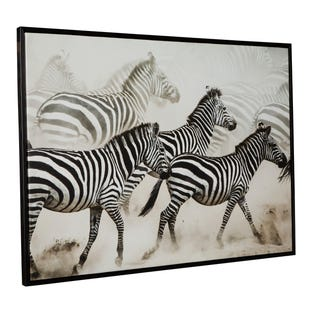 Safari Dazzle Framed Canvas