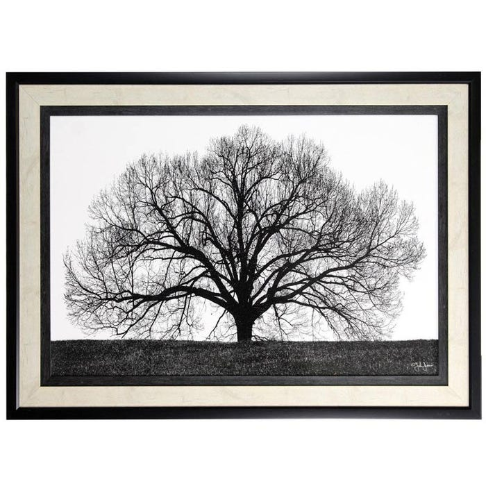 The Tree Black And White Framed Print Wall Art Weekends Only Furniture