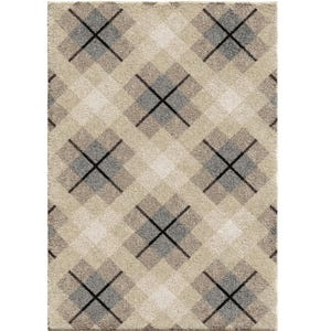 Criss Cross Plaid Shag 8x10