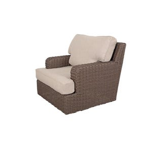 Brookstone Swivel Glider with Cushion