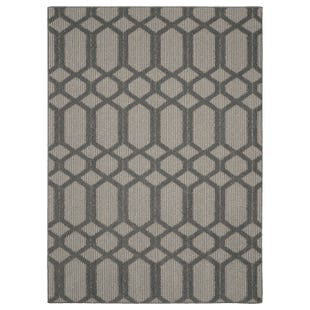 Pompeii Cinder Gray  White 5x7 Indoor/Outdoor Rug