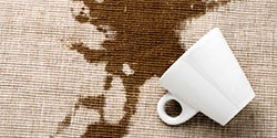 Furniture Protection Plan -  All Stains